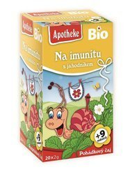 Herbatka dla dzieci - na odporność truskawka BIO (20 x 2 g) 40 g